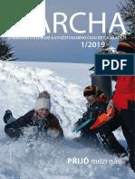 Archa1 2019 Pro Web