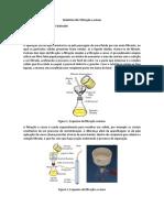 StephanieFantinatti-Filtração.docx