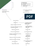 CeVD, MI, HCVD & Atrial fibrillation pathophysiology