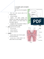 Division of larynx.docx