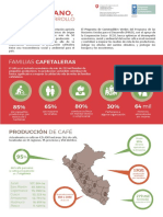 Cafe Peruano Motor Desarrollo