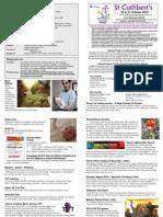 Notice Sheet 24 & 31 Oct 10-1