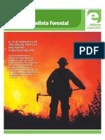 Diario Concepción - Día Del Brigadista Forestal 2019