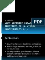 vogtkoyanagiharadagrau-101114161921-phpapp02
