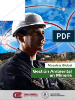 MAESTRÍA GLOBAL EN GESTIÓN AMBIENTAL EN MINERIA.pdf
