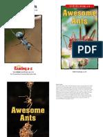 raz_ln30_awesomeants_clr.pdf