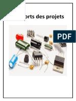 Rapport Des Trois Projets-1-Converti