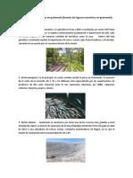 Actividades Económicas en Guatemala