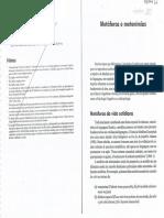 LET-A20 - 21 - FERRARI - Metaforas e metonimias.pdf