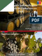 Desafíos-para-la-diversificación-de-la-oferta-de-Enoturismo-en-Chile