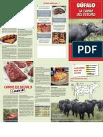 Folleto Carne de Bufalo