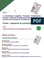 Resumen Constitución