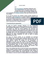 CICLO DE CARNOT.docx