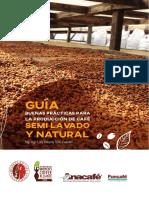 Guia de proceso Honey.pdf
