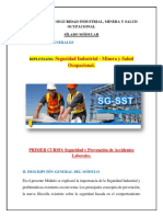 Silabo modular Diplomado.pdf