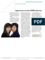 Pseudo Genes Act as MircoRNA Decoys