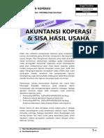 akuntansi koperasi