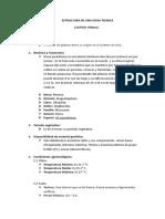 Estructura de Una Ficha Tecnica Platano