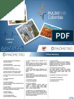 Datexco Pulso 2.2019