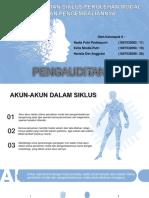 ppt audit klp 9 bab 19.ppt