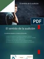 Fisio Auditivo