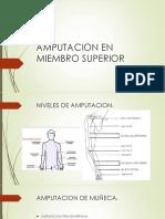 Protesis en Miembro Superior