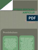 Biosintesis Senyawa Ampicilin