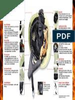 Pf1000 Extreme Ausstattung