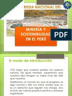 Desarrollo Sustentable 2014-II