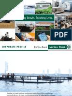 Amana Bank Corporate Profile 2017