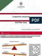 coagulacion sang.pdf
