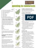 Rainforest Factsheet Teachers