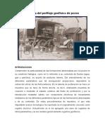 Historia Del Perfilaje Geofísico de Pozos