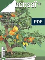 France Bonsai No.93 - 2012 (1)