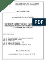 Cartaz Defesa Doutorado Mariana Ruiz Bertucci Schmitt