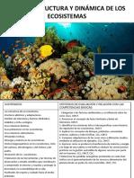 Tema 4 Estructura y dinámica de los ecosistemas [Autoguardado].pdf