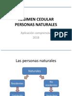 10-Estructura Del Impuesto de Personas Naturales