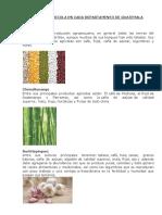 Produccion Agricola en Cada Departamento de Guatemala