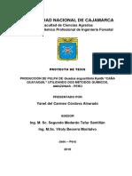PROYECTO-DE-TESIS-YANET-1-1