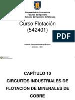 Circuitos Industriales de Flotación