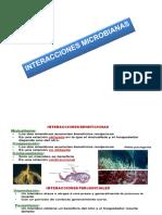 Interracciones Microbianas 8 (1)