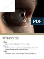 Ophtalmology Anatomy