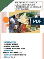 ACTIVIDADES PRODUCTIVAS DE BOLIVIA