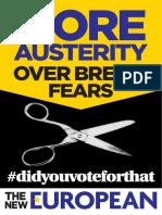 Austerity_A4_706904EE.pdf
