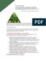 Qué Es Pirámide Alimenticia