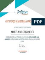 Cert_CO_TIC_NA_C2 - MARCELINO FLOREZ PUERTO.pdf