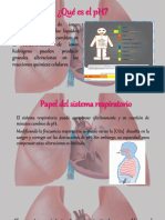 Regulación Del PH Por Medio de Pulmones