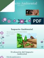 6a Diana Maite Impacto Ambiental