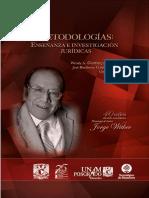 Metodologias. Enseñanza e Investigacion Juridicas - Wendy a. Godinez - 959