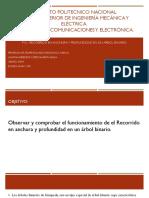 P12 - Recorrido en Anchura y Profundidad en Un Árbol Binario